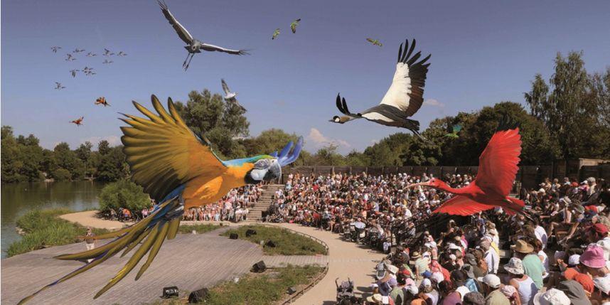 parc-oiseaux